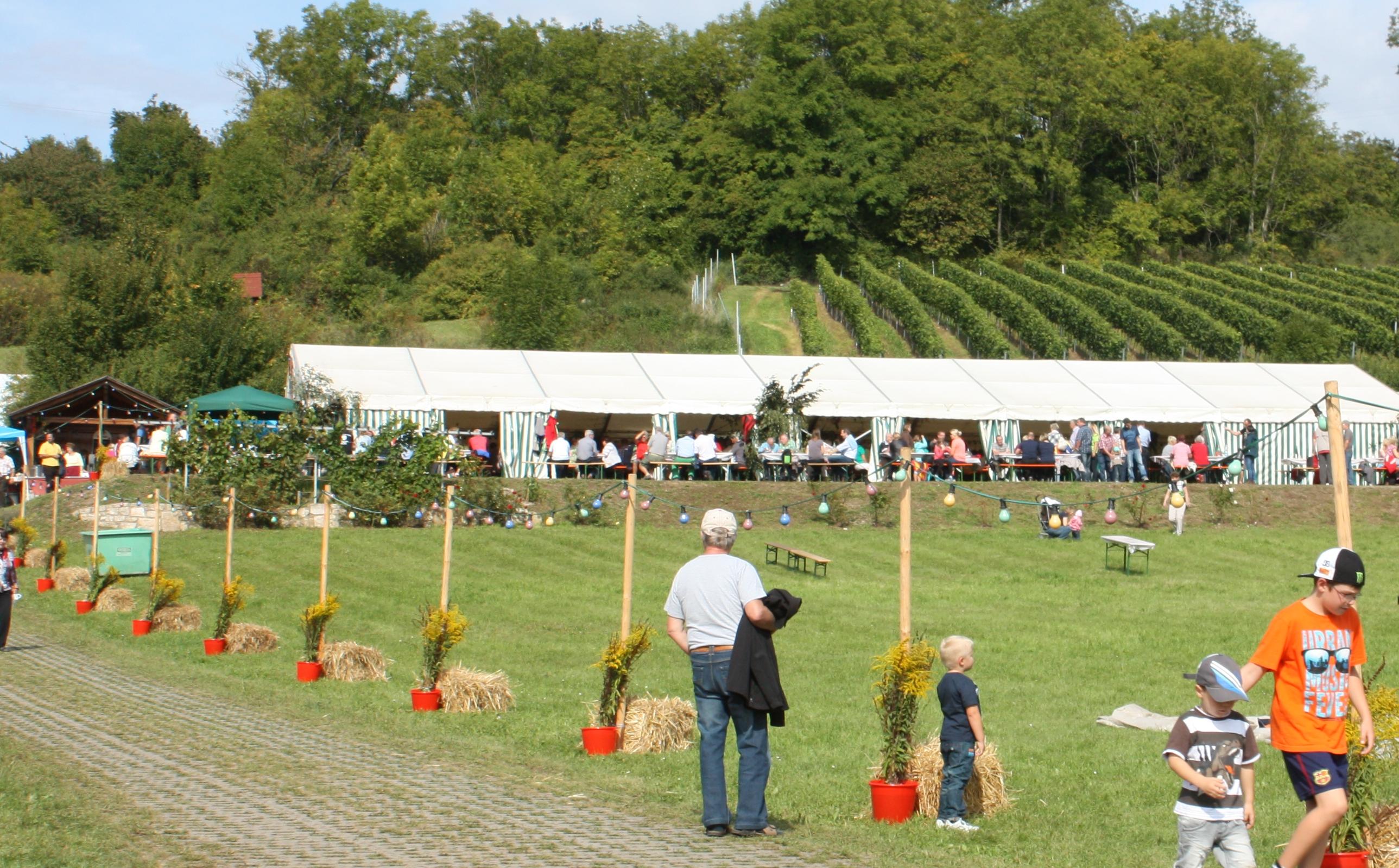 Mehr Informationen zu: Weinbergfest auf dem Weinberg