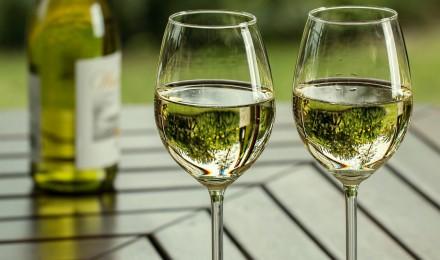 Visualisierung Erfrischender Frühling - Spritzige Weine